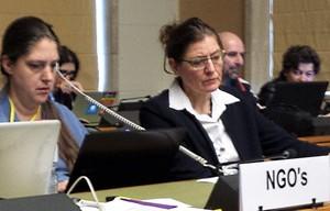 Rhoda Tretow und Dr. Birte Rodenberg von der CEDAW-Allianz in Genf